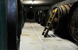 Weingut Weiss Gols mit histaminfreiem Wein